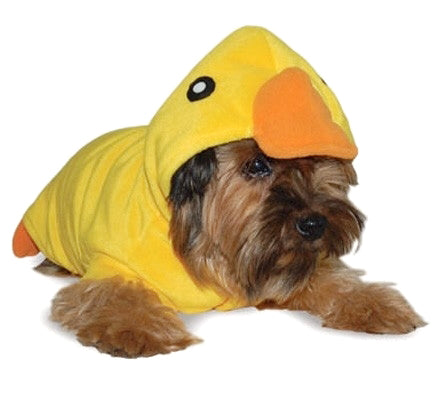 Lucky Ducky Coat Size Small