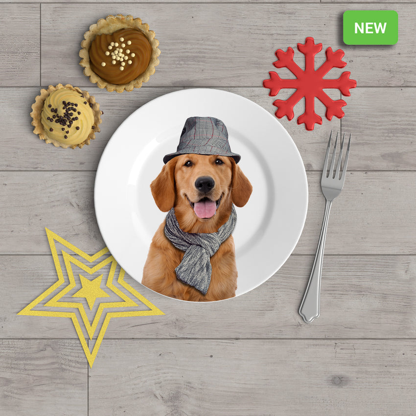 "Holiday Appetizer Plate 6"" -  Gus the Golden Retriever - Matthew Lew Art Print"