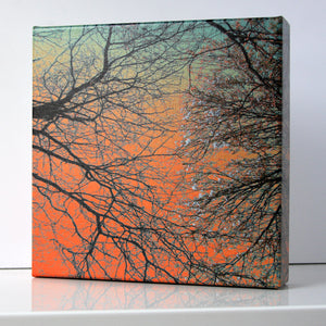 Sunset Forest III Print - Matthew Lew Art Print