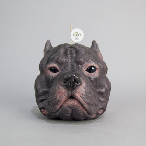 Staffordshire Bull Terrier (Pit Bull) Candle
