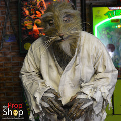 Movie Rat Costume