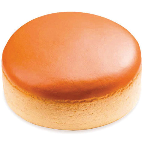 Jumbo Cheese Cake Squishy