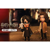 Harry Potter Magic Series Blind Box