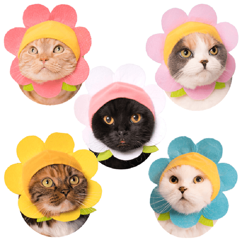 Flower Cat Cap Blind Box