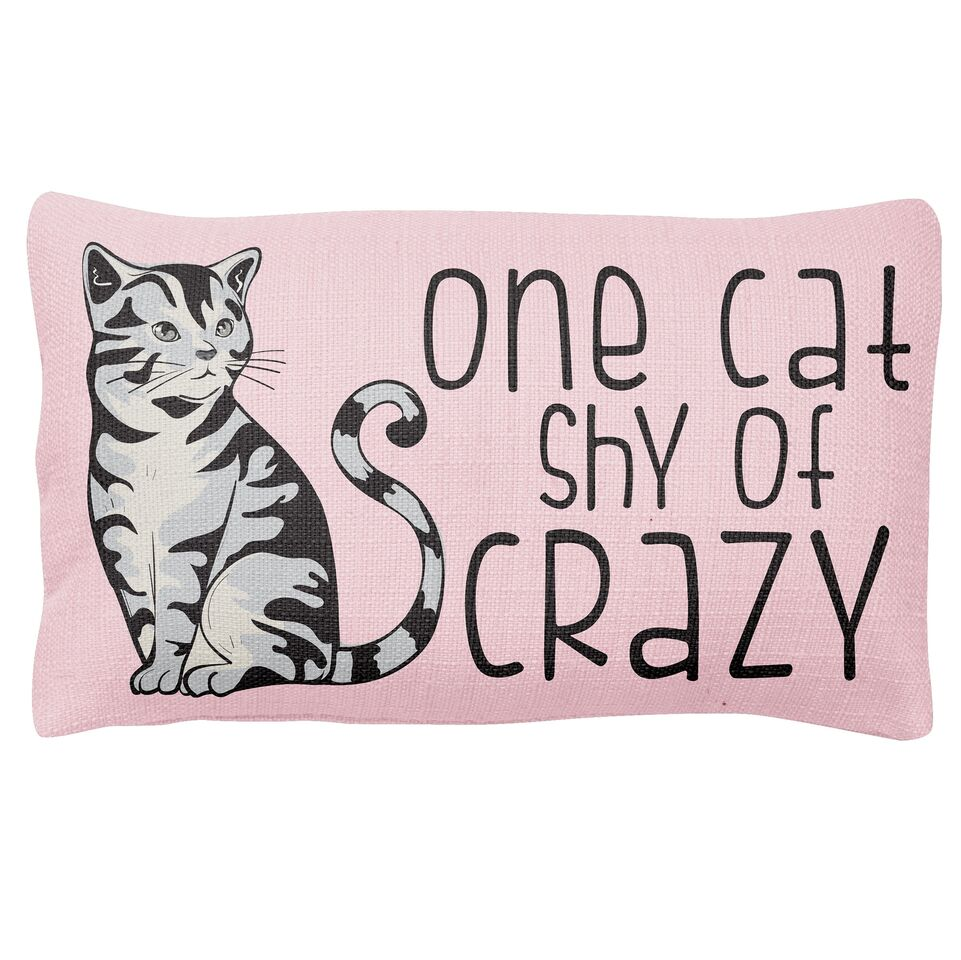 Pillow- One Cat Shy Crazy