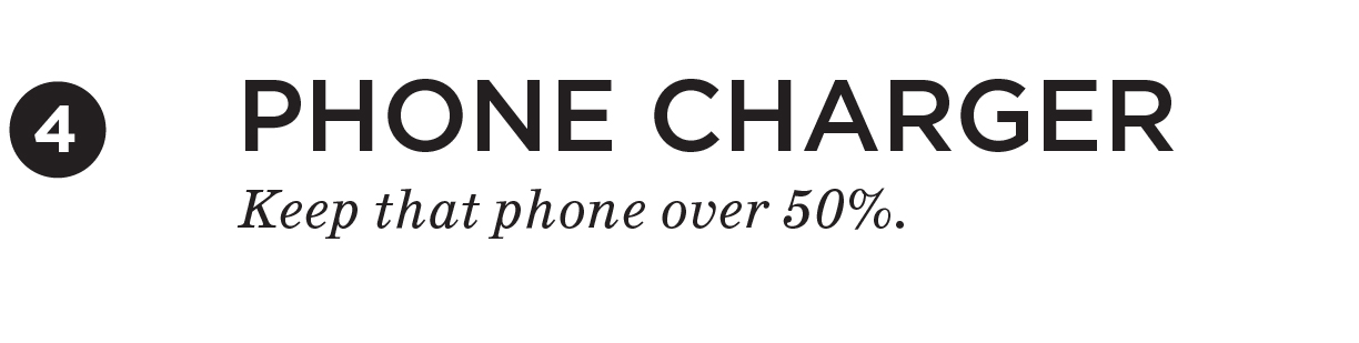 Phone Charger. Kepp that phone over 50%.