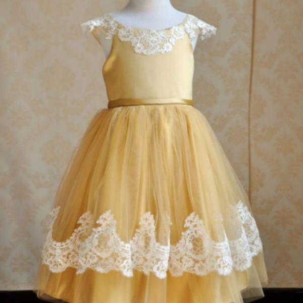 "Vintage Glam - The ""Belle"" Dress Gold and Lace Dress - Angora Boutique - 3"