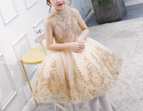 "The ""Brielle"" Gold Sparkle Lace Dress"