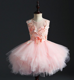 "The ""Anjae"" Girls Pink Butterfly Tutu Dress"