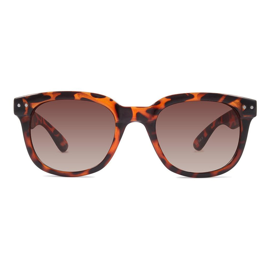 Sonnenbrille Crusheyes Astonished black tortoise gradient xrtnk2kY