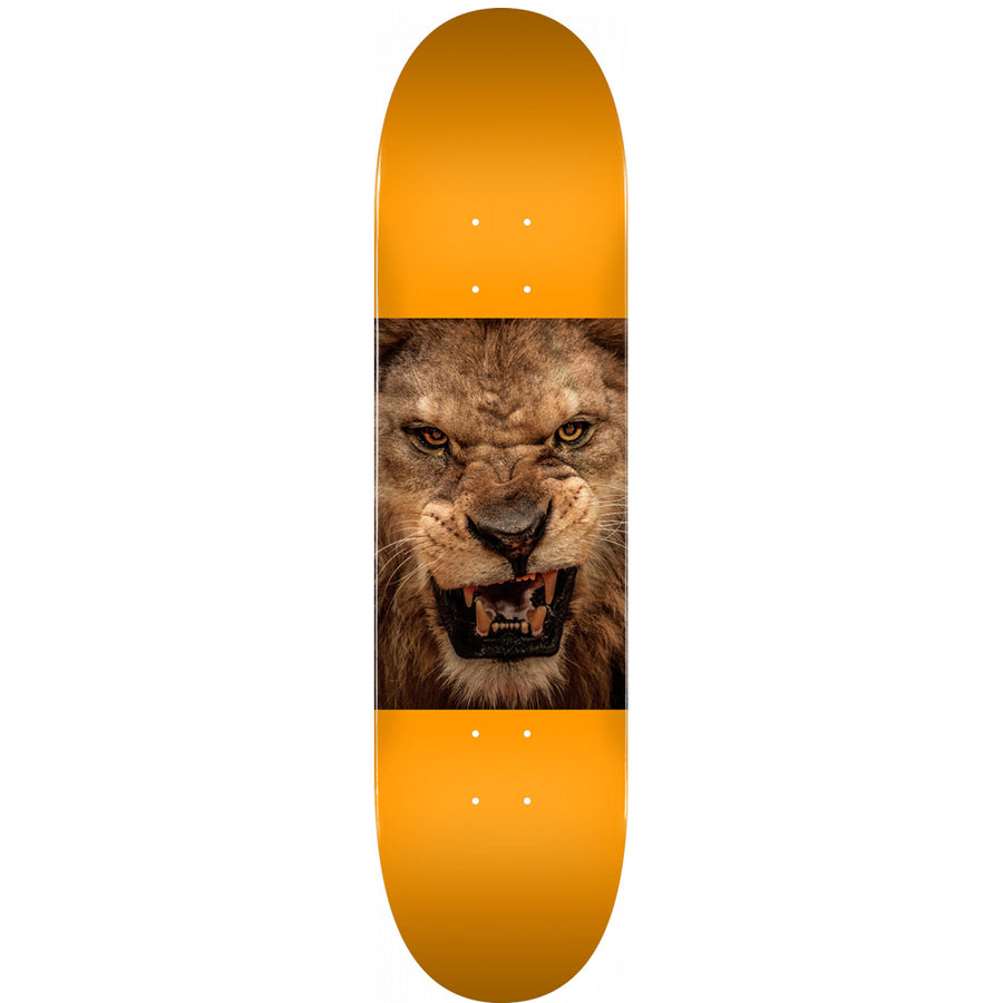 "Powell Peralta Mini Logo Chevron Animal 8.0"" Deck - Lion Eyes"