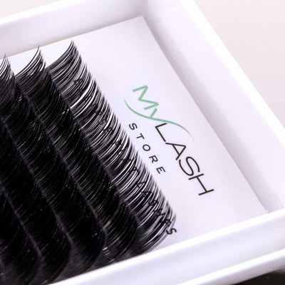 My Lash Store Ellipse Flat Lashes Close Up