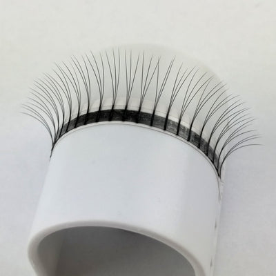 Lash Tray - 3D Pre Made Volume Fans - B Curl