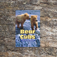 Bear Cubs by Tandi Jackson, Sunshine Non-fiction
