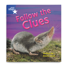 Follow the Clues. Rigby Star Phonics