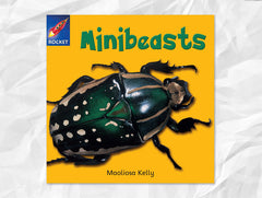 Cover of Minibeasts (Rigby Rocket)
