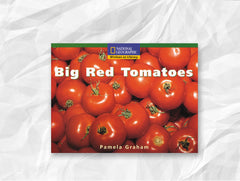 Big Red Tomatoes