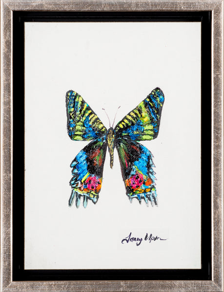 "Madagascar Sunset Butterfly      6 ½"" x 8 ¾"" x 2"" deep"