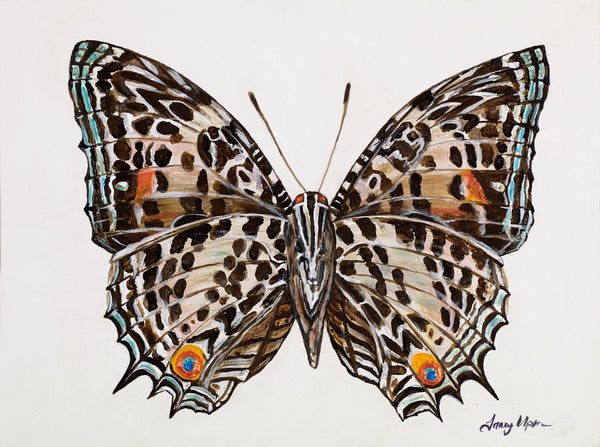 "Brush-Footed Butterfly   12"" x 18"""