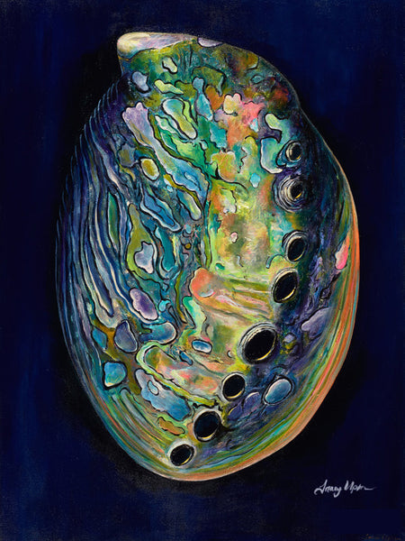 Abalone Shell on Midnight Blue