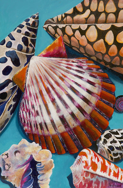 Limited Edition Scallop Mix Print