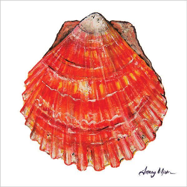Big Island Bay Scallop Print I