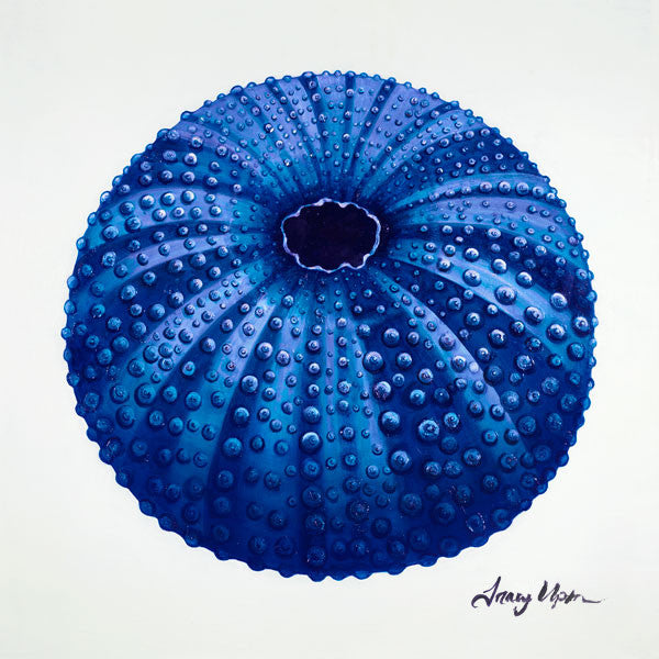Bright Blue Sea Urchin Print