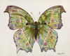 "Bright Chartreuse Butterfly      16"" x 20"""