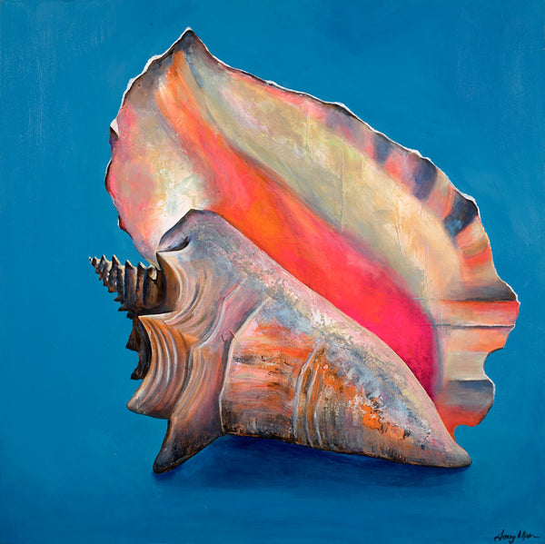 Queen Conch on Brilliant Blue