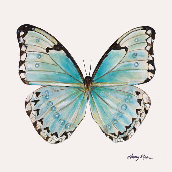 Limited Edition Costa Rica Morpho Butterfly Print