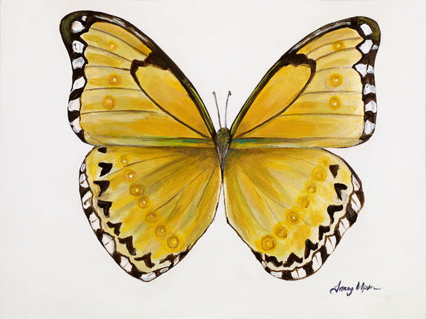 "Golden Yellow Morpho      12"" x 18"""