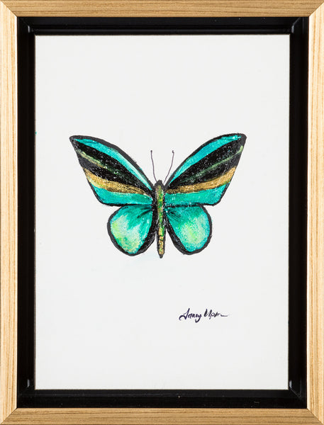 "Emerald Green Goliath Birdwing              6 ½"" x 8 ¾"" x 2"" deep"