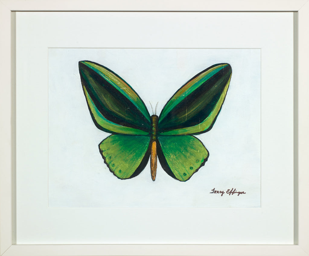 "Green Goliath Butterfly            17 ½"" x 14 ½"" x 1 3/4"