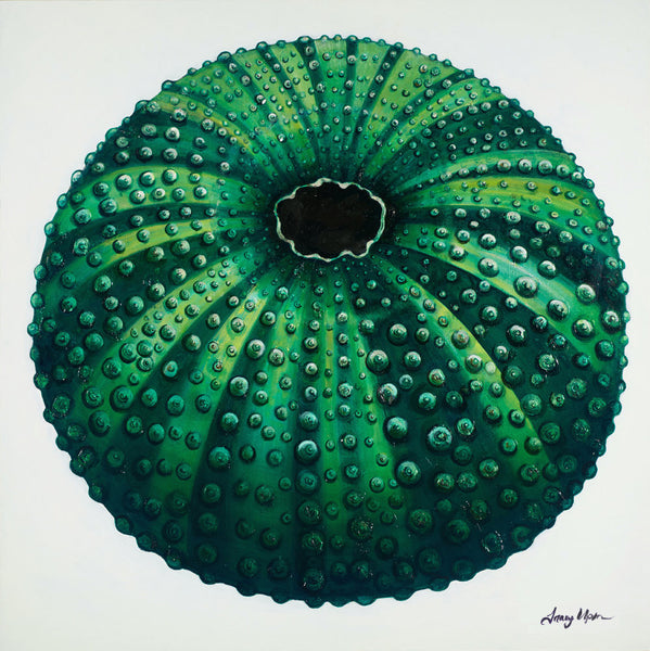 Green Sea Urchin Pouf        36
