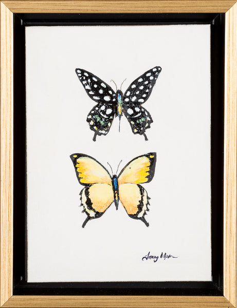 "Spotted Swallowtail and Yellow Teardrop      6 ½"" x 8 ¾"" x 2"" deep"