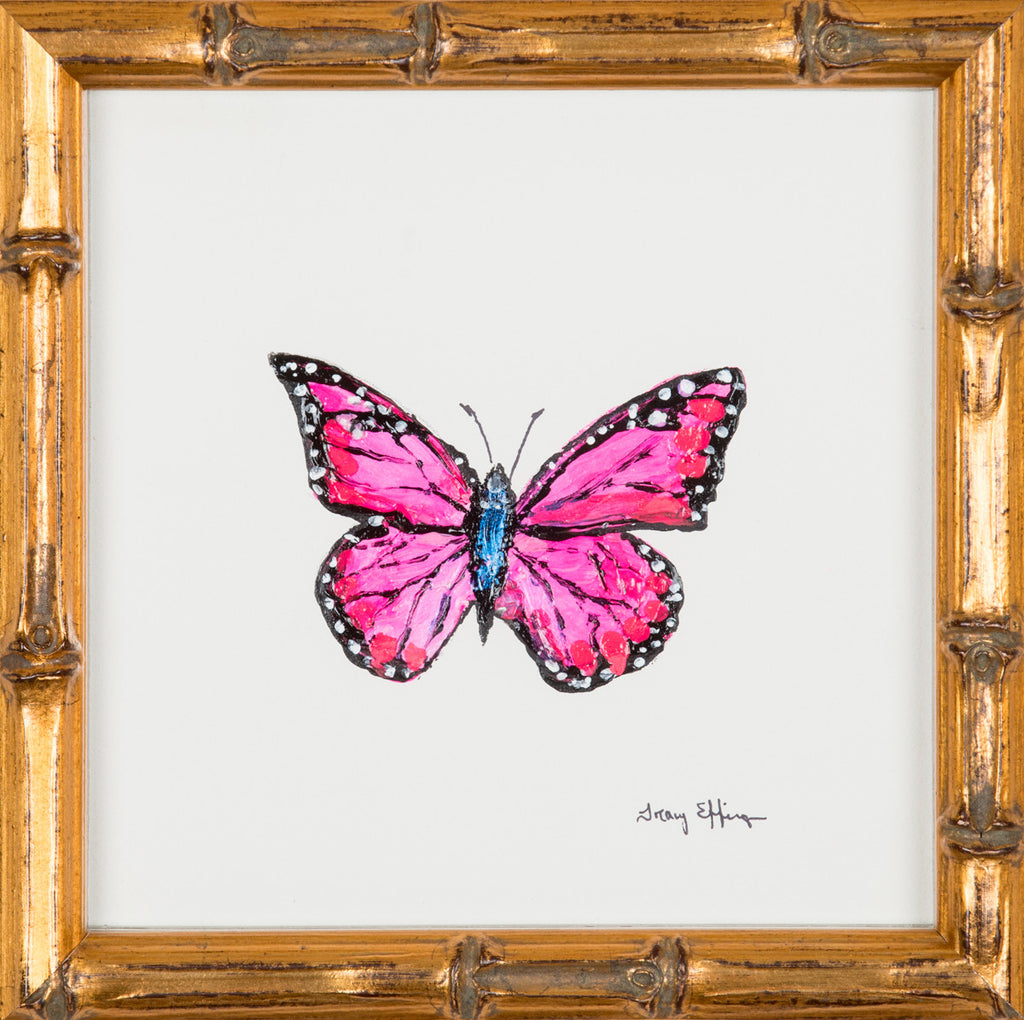 "Hollywood Cerise Monarch      7"" x 7"""