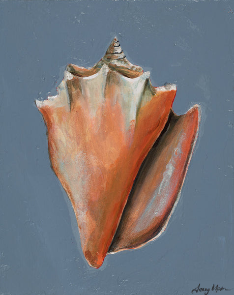 Conch Shell     8