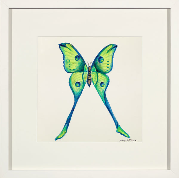 "Chartreuse Madagascar Comet Moth             13 ½"" x 13 ½"""