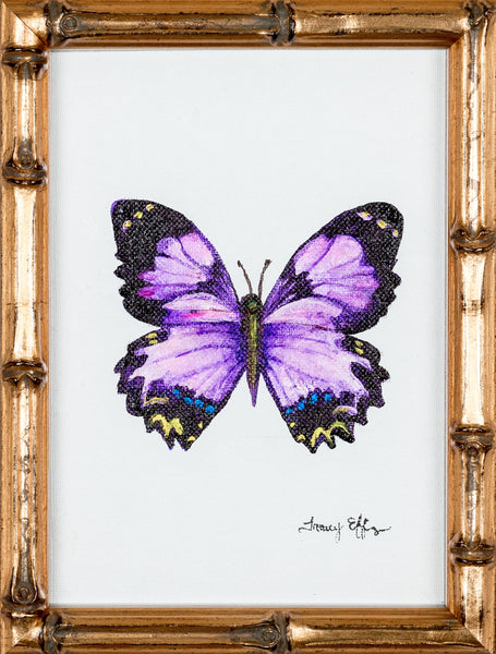 "Violet Spotted Monarch      6""x 8"""