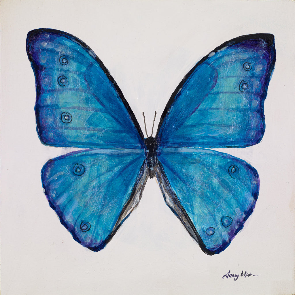 "Electric Blue Morpho Butterfly      6"" x 6"""