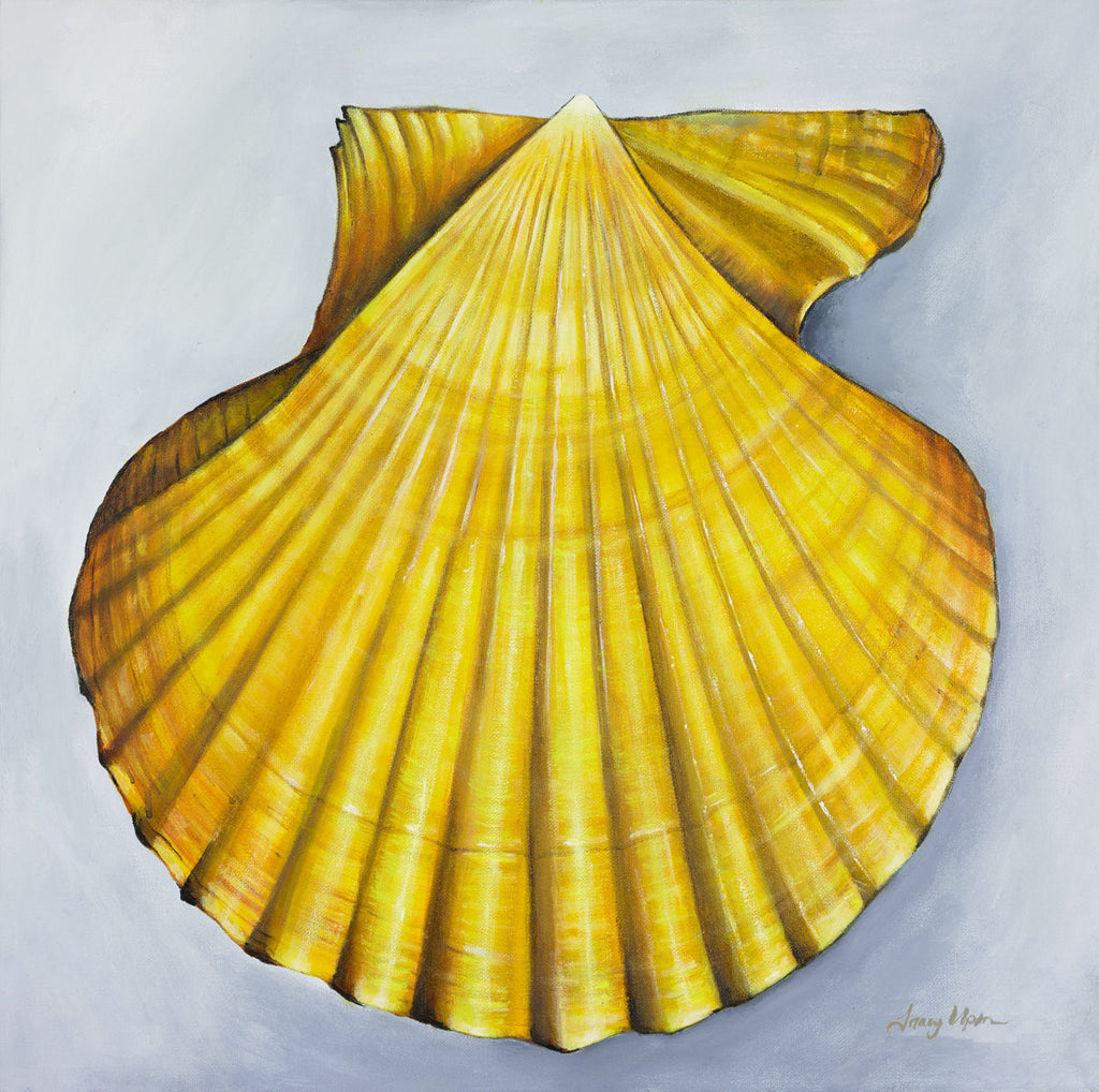 Yellow Scallop Shell      20
