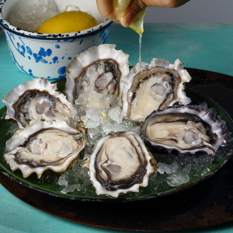 Fresh Juicy Oyster (Seasonal Pricing)