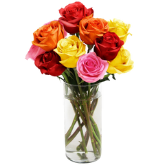 Blooming 12 Long Stemmed Assorted Rose Bouquet