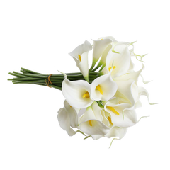 Eforcase Refreshing Calla Lily Bridal Wedding Bouquet Flower Bouquets