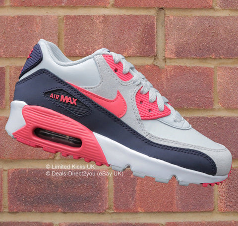Nike Air Max 90 (GS) - Pure Platinum/Purple Dynasty/White