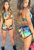 Fashion coconut trees print Bikini Swimwear Swimsuit