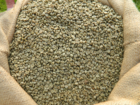 Costa Rica SHB Green raw Dota coffee beans 1 Kg