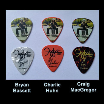 """Fool For The City"" - Commemorative Guitar Picks!"