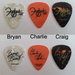 Signature Guitar Picks
