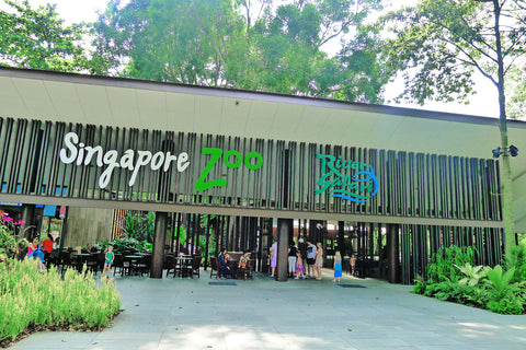 Lokasi Singapore River Zoo